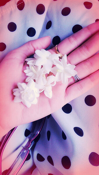 Aesthetic White Flowers