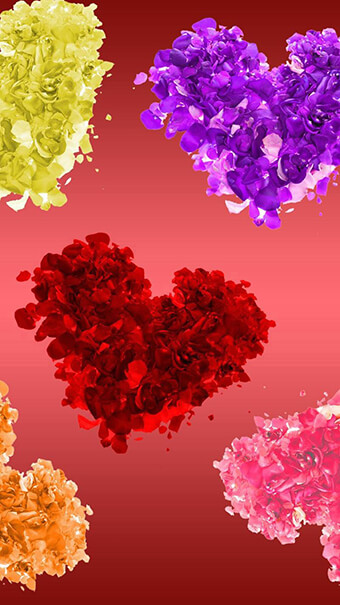 Colorful Hearts Flowers