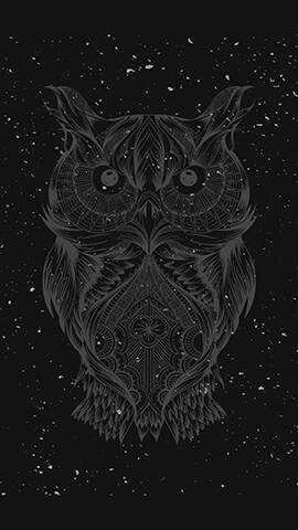 Night Owl Wallpaper For Phone ...