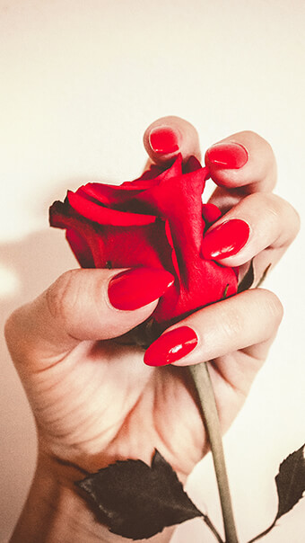 Red Rose Hand Flower