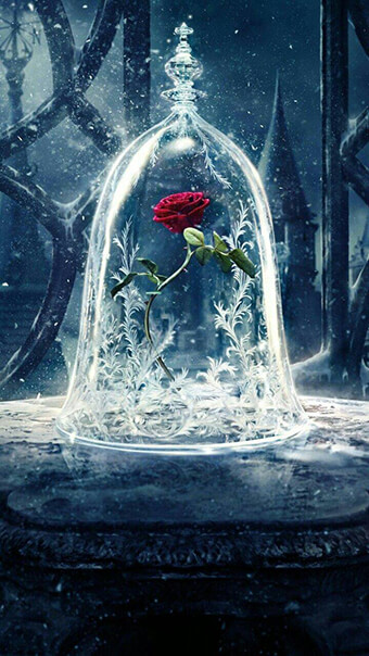 Rose In Glass Flower