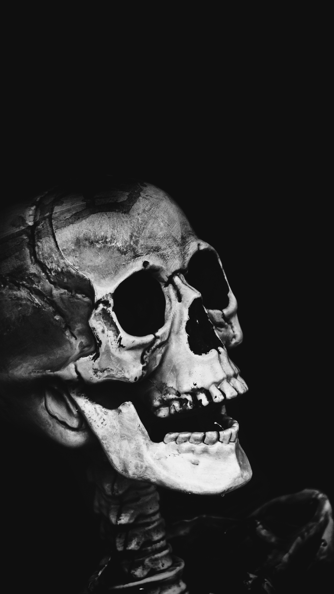 Download Our HD Classic Skull Wallpaper For Android Phones